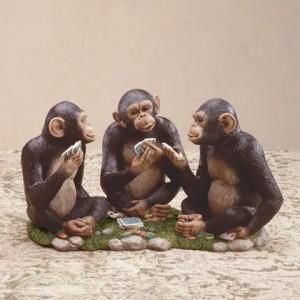 3 chimps